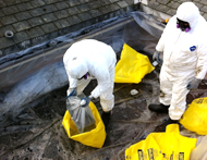 Roofers Conducing Asbestos Removal