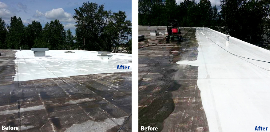 RoofCleaningBeforeAfter3